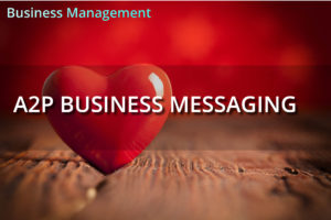 Consumer Insights Briefing: A2P Business Messaging
